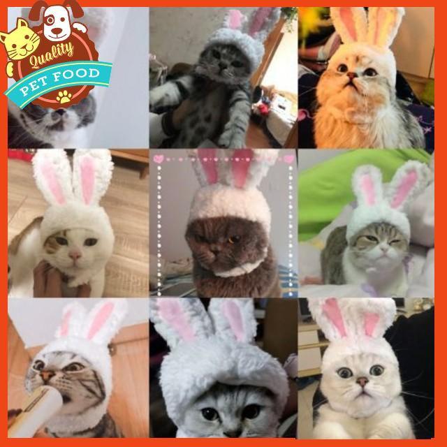 [FLASH⚡️SALE] Mũ tai thỏ trắng dành cho thú cưng