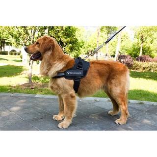 [Mã 157FMCGSALE giảm 8% đơn 500K] Đai yếm cho chó Moemoebear logo dính thumbnail