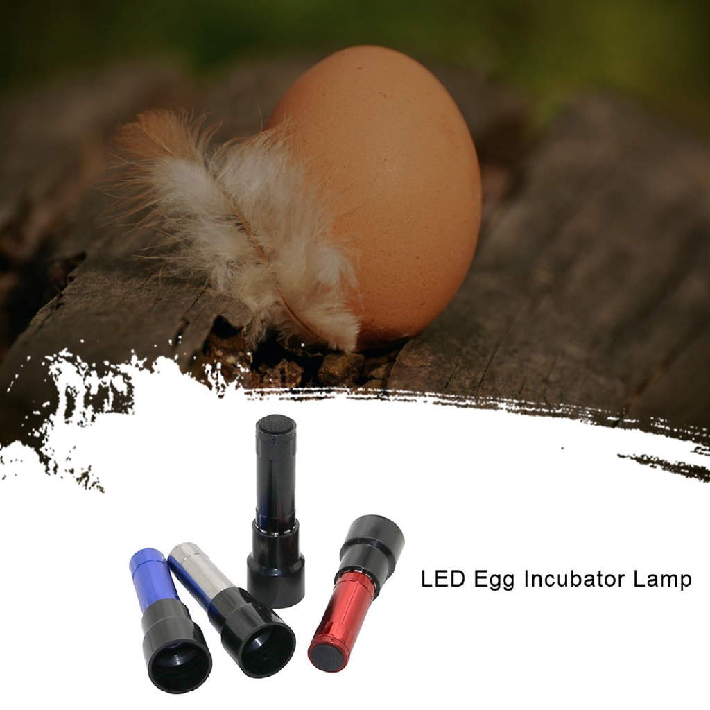 ^SD^ Light Egg Incubator Egg Light Hatching Flashlight Chicken Duck Egg Incubator