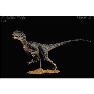 Mô hình khủng long velociraptor chính hãng Rebor