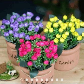 Chậu hoa để bàn - chậu gốm hoa nụ - 9972711 , 407042941 , 322_407042941 , 95000 , Chau-hoa-de-ban-chau-gom-hoa-nu-322_407042941 , shopee.vn , Chậu hoa để bàn - chậu gốm hoa nụ