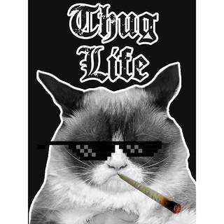 Kính Thug Life hàng chuẩn loại 1 (Ảnh do shop tự chụp)