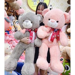 Gấu bông Teddy ôm tim lệch 2 màu hồng và ghi kích thước 80-100-140cm – Teddybearhouse