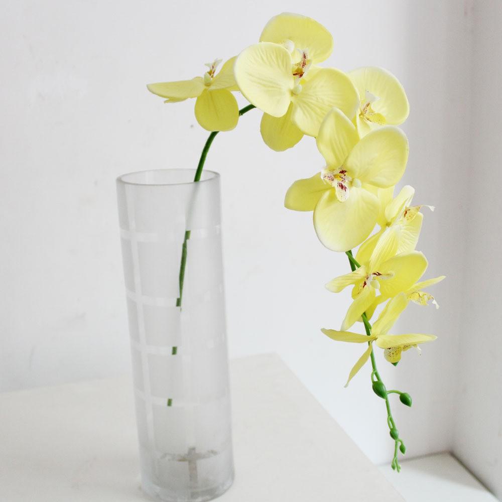 Hoa giả - Lan Hồ Điệp Cỡ Đại
