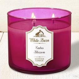 Nến thơm 3 tim White Barm Cactus blossom - Bath & Body Works (411g)