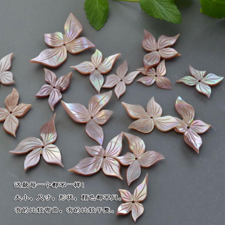 vỏ sò trang trí hoa 20-40mm