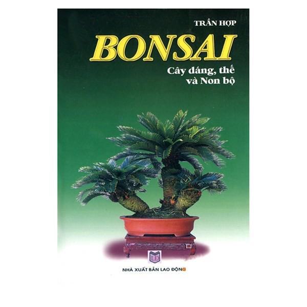 Bonsai Cây Dáng , Thế Và Non Bộ bonsai