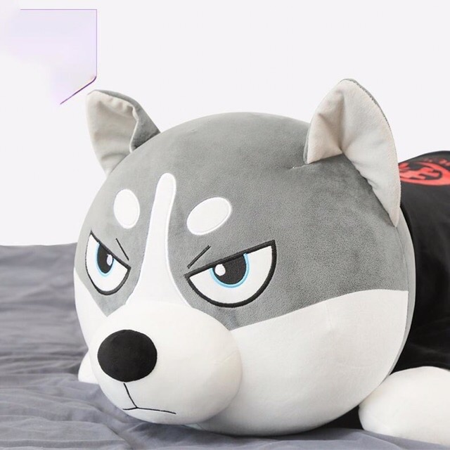 Gấu bông chó husky xám mặc áo co dãn 4 chiều siêu to khủng lồ SunnyVlog
