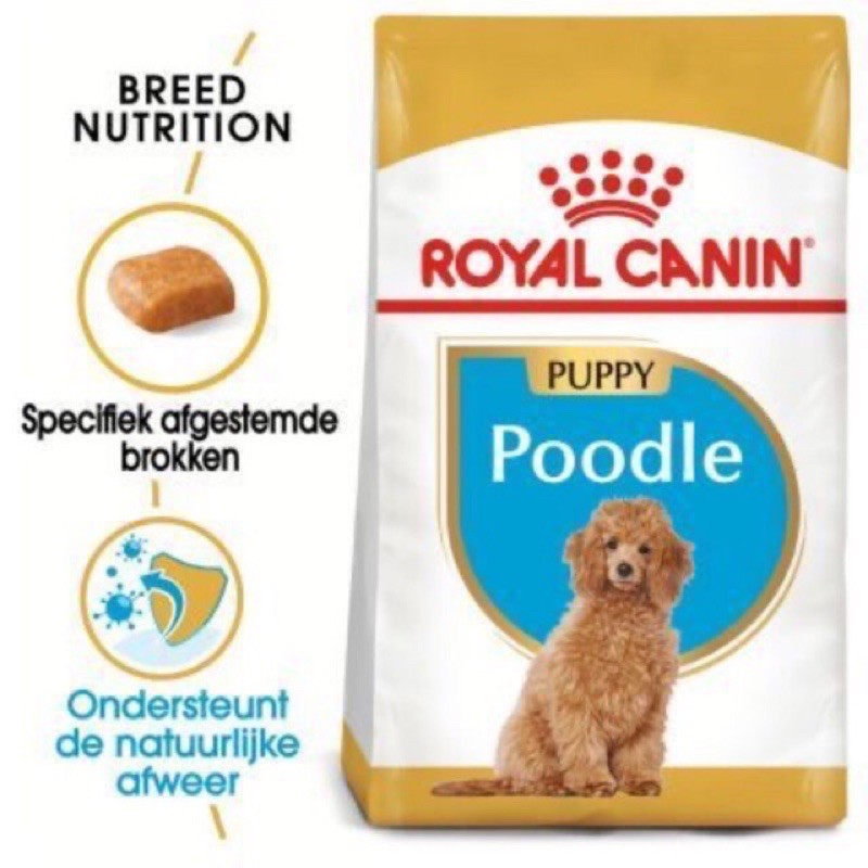Royal Canin Poodle Puppy 500G