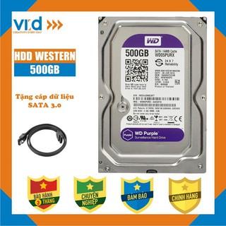 Ổ cứng HDD 500GB Western tím - Tặng cáp sata 3.0 - Bảo hành 3T