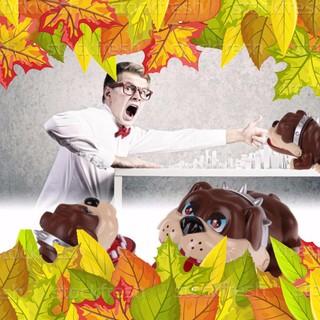 Trò chơi khám răng chó siêu hót – NAM TỪ LIÊM
