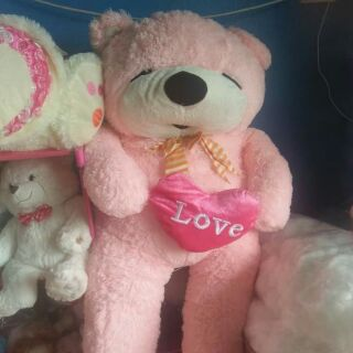 gấu của cô cúc 4