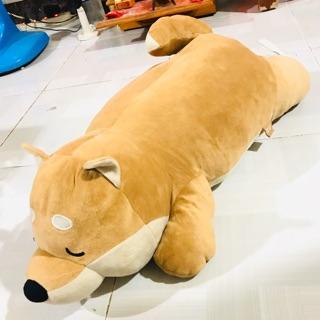 Thú nhồi bông Chó Shiba size 70cm chính hãng Miniso