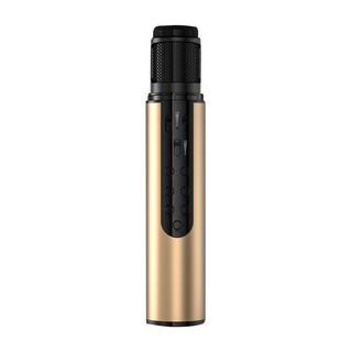 Micro Bluetooth không dây Karaoke cao cấp PKCBK1 Chính Hãng thumbnail