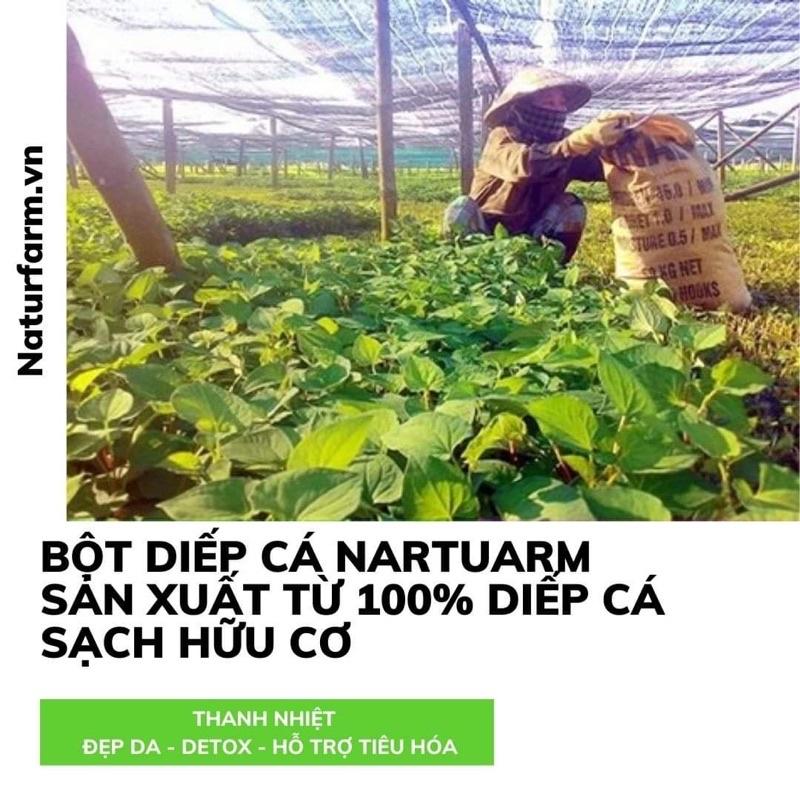 Bột diếp cá sấy lạnh Natufarm - giải nhiệt, thanh lọc cơ thể, hỗ trợ tiêu hoá.