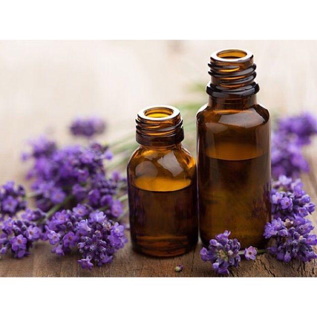 Sỉ Tinh dầu hoa Oải hương