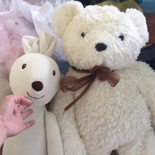 2 gấu đẹp