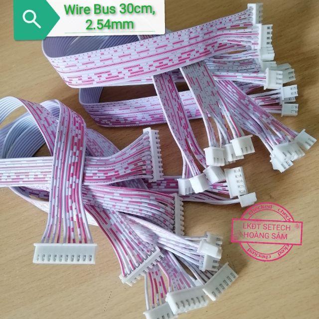 Dây BUS 2 đầu 30cm,2.54mm các loại:  Wire Bus 2( 2chân,3 chân,4 chân,5 chân,6 chân,8 chân, 10 chân.)