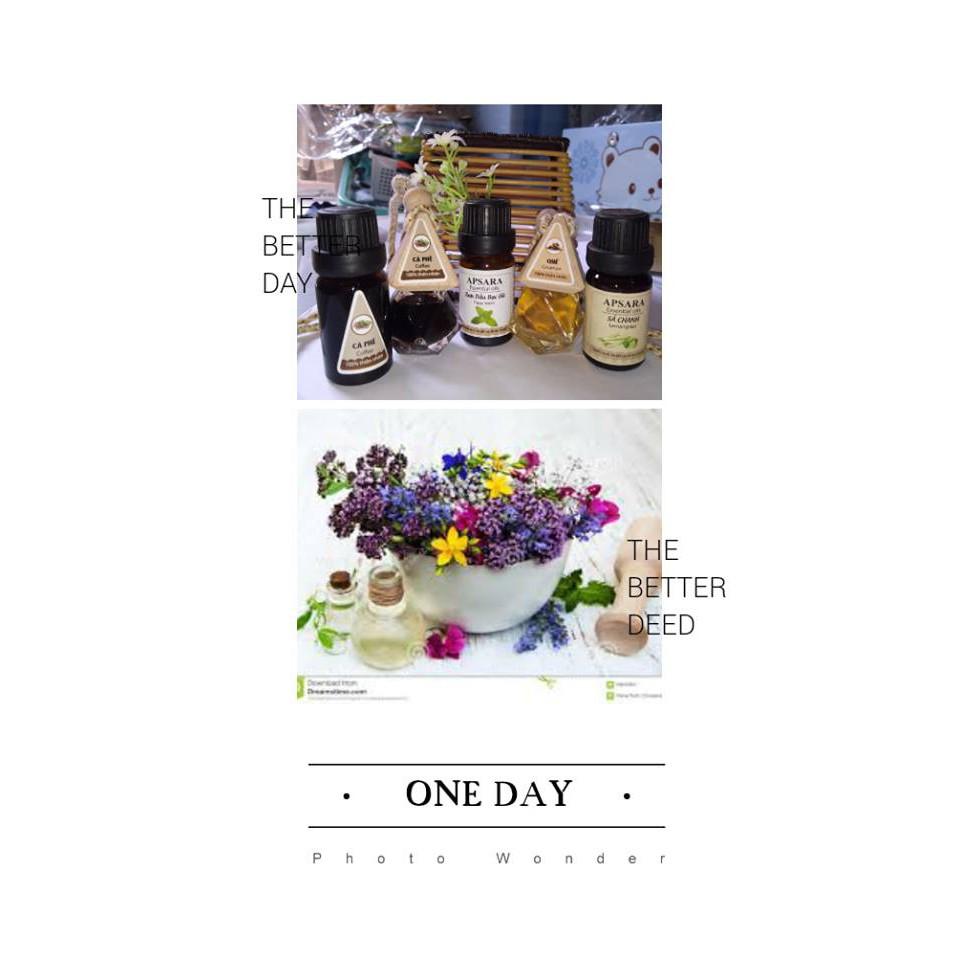 [Sale thả ga 9.9] Combo 3 lọ tinh dầu thiên nhiên 10ml thơm phòng như sả chanh,cà phê, trầm, hoa nhài, oải…