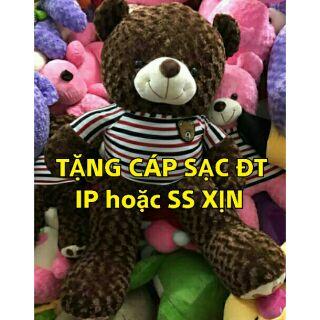 Gấu Teddy giá rẻ khổ vải may 1m5