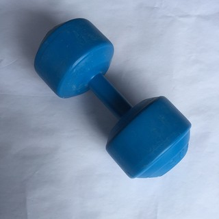 1 cục tạ tay đặc 8kg vỏ nhựa, có ruột là xi-măng non, tập tay, vai, ngực, xô cho nam, cho nữ