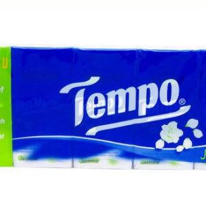 10 Khăn Giấy bỏ túi Tempo Icy Menthol