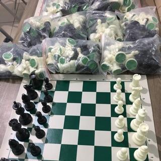 Combo 10 bộ cờ vua tiêu chuẩn 980k