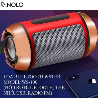Loa Bluetooth WSTer WS-100 Hỗ Trợ Thẻ Nhớ, USB, FM Pin Trâu