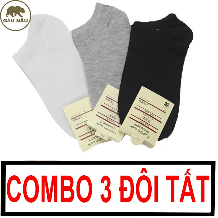 Combo 3 đôi tất GN645 đẹp cotton co giản 4 chiều Gấu Nâu
