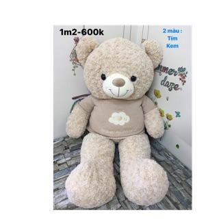 Teddy cao cấp i love you 1.2m