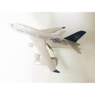 Mô hình Skyteam dài 25cm