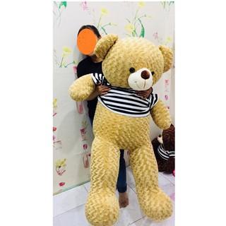 Gấu bông Teddy khổ 1m6 màu cafe sữa