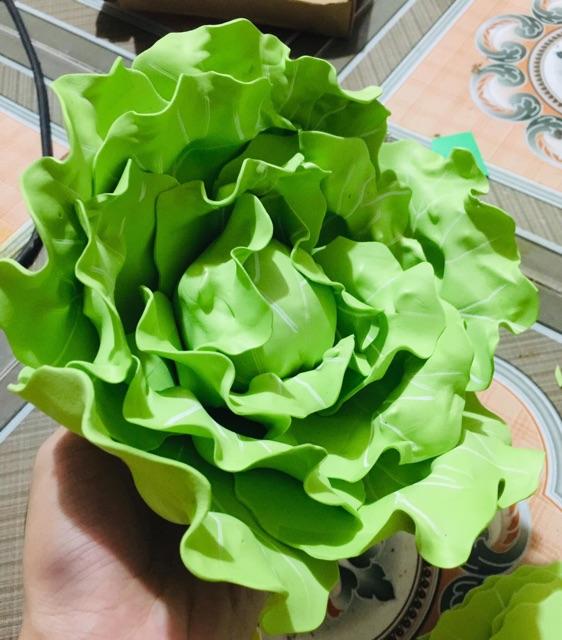 Các loại rau: chủ đề thực vật