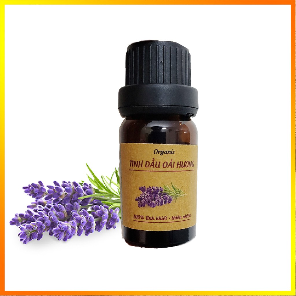 Tinh dầu Oải Hương, Lavender (Organic), Nguyên chất, 5ml,10ml, Có kiểm nghiệm