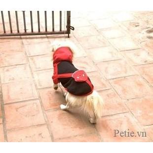 [Mã PET1504 giảm 8% đơn 300K] Áo mùa đông cho chó mèo có mũ & túi siêu ấm, hàng hiếm có khó tìm