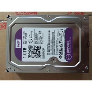 Ổ cứng Western Digital Purple 1TB 64MB