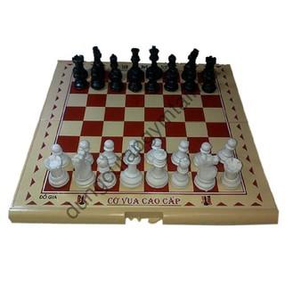 dụng cụ tập Bàn cờ vua hàng giảm giá 20%