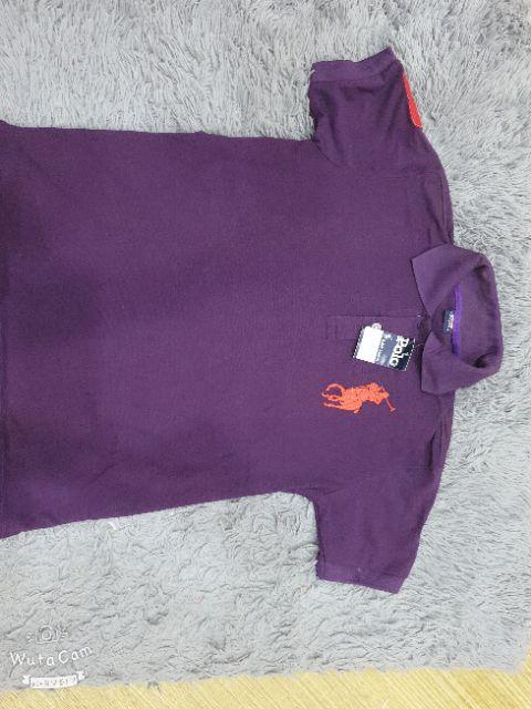Áo phông nam polo con cá sấu