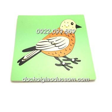 Bảng ghép hình Montessori Puzzle - Sinh học - Hình con chim