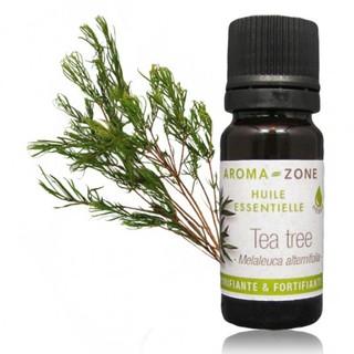 Tinh dâ u Tea tree AROMA ZONE- Melaleuca alternifolia thumbnail
