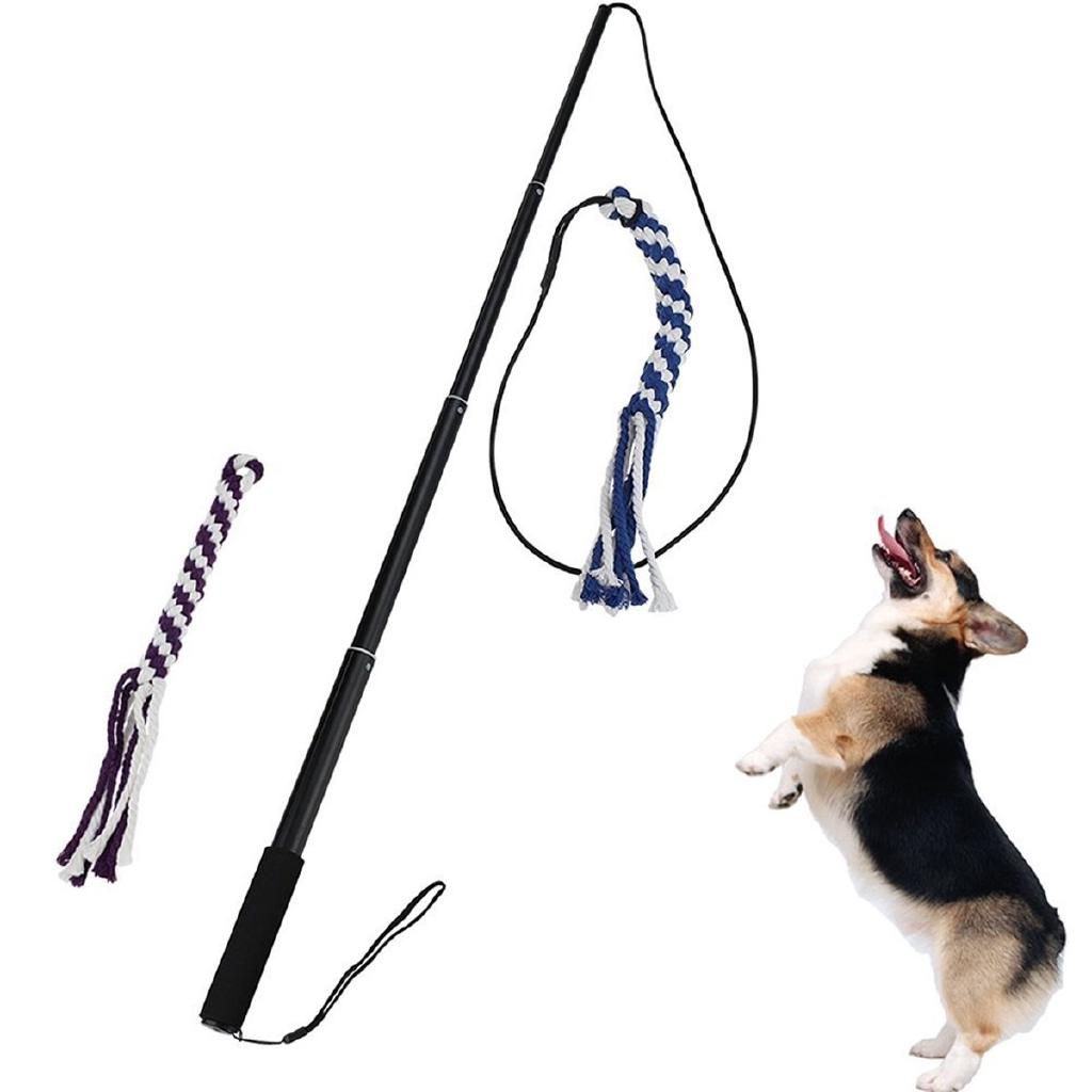 NEW Interactive Dog Extendable Teaser Wand with 2 Rope Chew Tail Toy Blue/Black