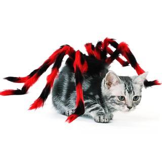 Thời Trang Chó Mèo nhện amazon vui nhộn chơi Haloween( 3 -size) thumbnail