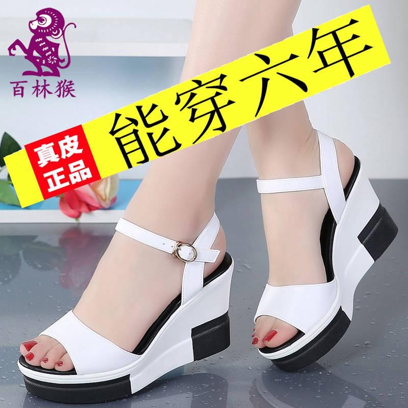 รองเท้าแตะหนังแม่หญิงกับรองเท้าแตะส้นเท้าด้านล่างและรองเท้าแตะ