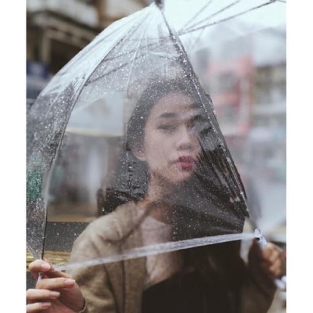 Ô dù đi mưa trong suốt, ô dù trong suốt chụp ảnh đi mưa