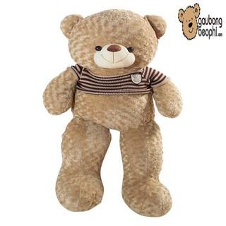 [ RẺ VÔ ĐỊCH ] Gấu bông teddy áo len cao cấp màu cafe sữa khổ vải 1M4