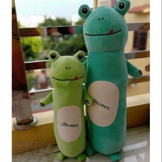 Combo gấu, gối ôm hai bạn ếch vui tính