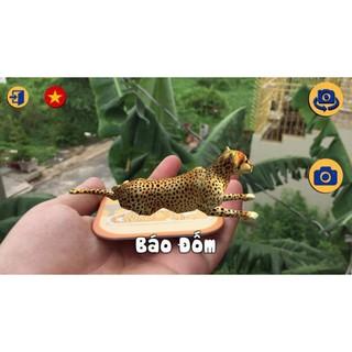 Hộp 60 thẻ animals 4D (thẻ thực tế ảo)