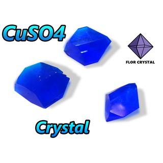 Bộ nuôi tinh thể CuSO4