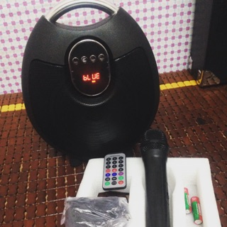 Loa karaoke xách tay SN310