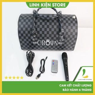 Loa Crown TTD-601,TTD-501 hát Karaoke cực hay - Tặng kèm micro có dây- Bảo hành 6 tháng